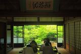 勝林寺 写経道場越しの新緑