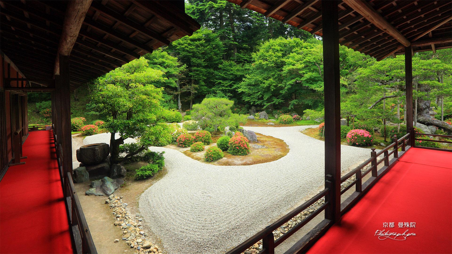 曼殊院 御座舟と蓬莱式庭園