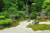 東福寺霊雲院 皐月咲く九山八海庭