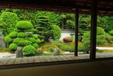 東福寺霊雲院 書院から臥雲の庭