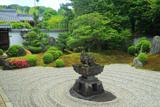 東福寺霊雲院 九山八海庭と新緑