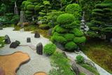 東福寺霊雲院 さつき咲く臥雲庭