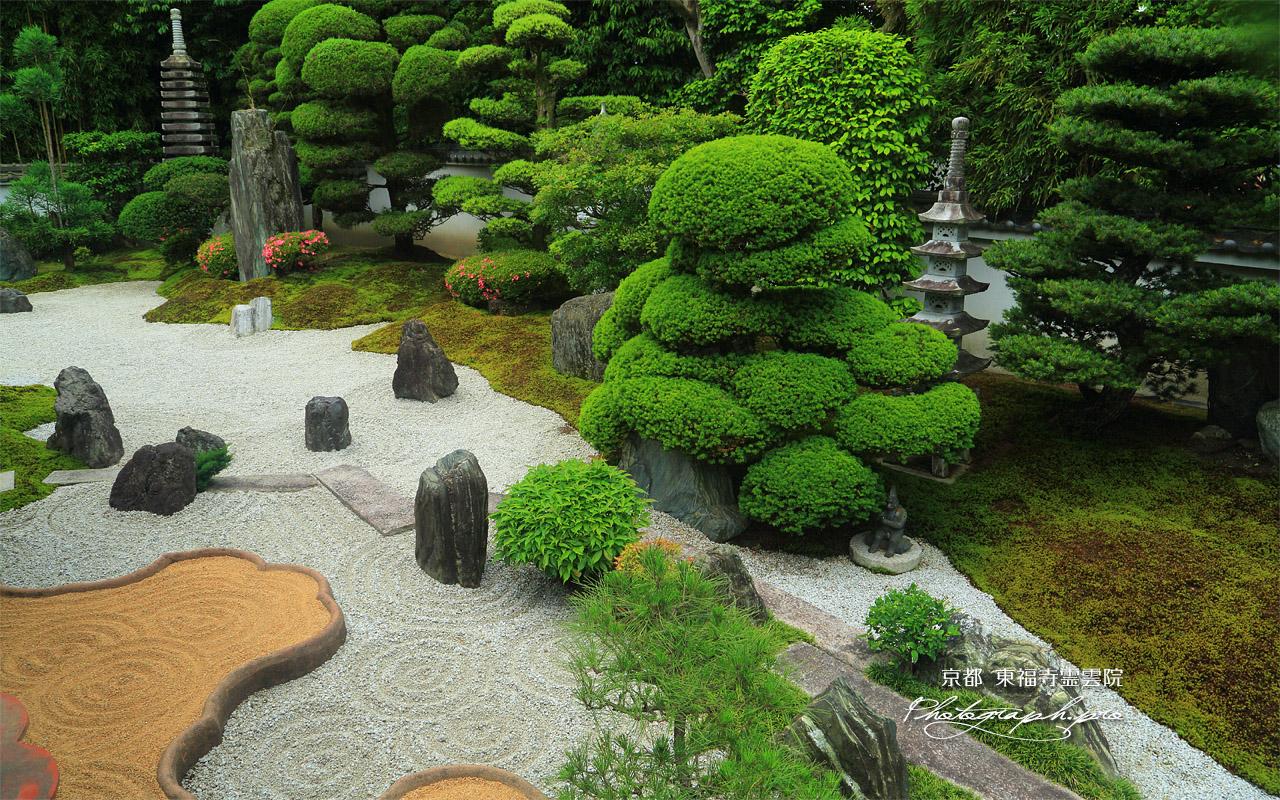 東福寺霊雲院 サツキ咲く臥雲庭 壁紙
