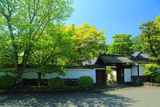 寿寧院 新緑と表門