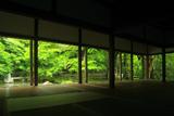 蓮華寺 書院から新緑の庭園と本堂