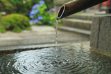 宗仙寺 手水とアジサイ