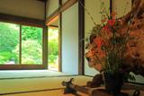 東福寺霊雲院 百合の生け花