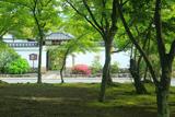 天龍寺 前庭の新緑と来福門
