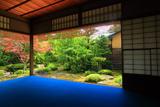 上賀茂社家町 西村家邸内から新緑の庭園