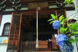 慈済院 紫陽花と弁天堂