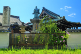 妙傳寺 紫陽花と日蓮聖人像