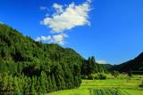 京都 夏空と大森の田園