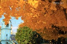 京都ハリストス正教会